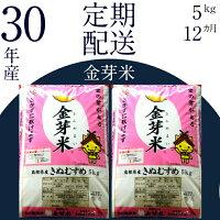 【ふるさと納税】米無洗米BG無洗米コシヒカリ(5kg×6ヵ月定期便)