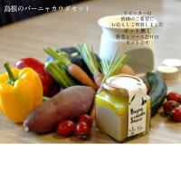 【ふるさと納税】米こりゃう米(まい)5kg×3ヵ月定期便