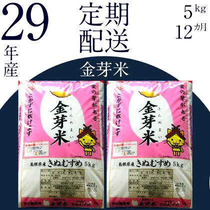 BG無洗米 金芽米 [定期] きぬむすめ  5kg/12ヵ月 米 無洗米 定期 島根県