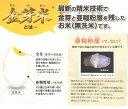 【ふるさと納税】定期便 米 BG無洗米 金芽米 きぬむすめ 5kg×6ヵ月 島根県 令和2年産 2