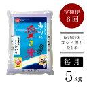 【ふるさと納税】定期便 米 BG無洗米 コシヒカリ 5kg×