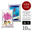 【ふるさと納税】BG無洗米きぬ/コシ食べ比べ(10kg×12ヵ月定期便)
