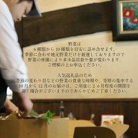 【ふるさと納税】バーニャカウダ・セット