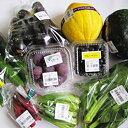 【ふるさと納税】産直・旬の野菜&果物たち 【野菜・セット・詰合せ・果物・フルーツ】