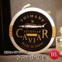 【ふるさと納税】島根セレビアキャビア 「アムール10g」