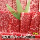 【ふるさと納税】石見和牛(黒毛和牛) ミックス焼肉用 300g