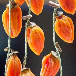 【ふるさと納税】有機JAS認証オーガニック西条柿で作った生干しつるし柿〈2縄24個〉【1209587】