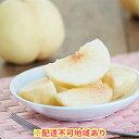 【ふるさと納税】●先行予約受付●ご家庭用 岡山県産 白桃 (