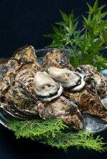 【1−26】殻付き牡蠣喜多嬉かき(きたきかき)