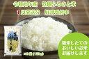 R1-01 2019年産「笠岡ふるさと米」15kg(2020...