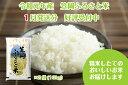 R1-01-10 2019年産「笠岡ふるさと米」10kg(2020年1月発送)