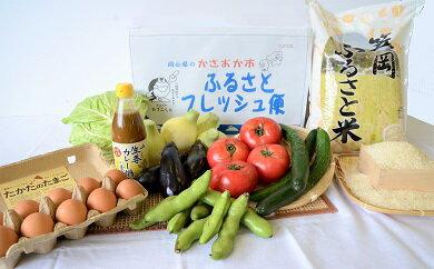 【JA10−1】ふるさとフレッシュ便(旬野菜・ふるさと米)