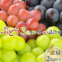 【ふるさと納税】岡山県産ぶどう詰合せ2kg以上(4房)【2021年9月上旬以降発送】