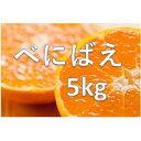 【ふるさと納税】0010-B-081 べにばえ 5kg(1月...