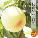 【ふるさと納税】0020-B-054 岡山県産白桃(約2kg