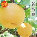 【ふるさと納税】0023-B-004 岡山県産 新高梨(にい