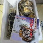 【ふるさと納税】0010-C-108備前市日生産牡蠣セット