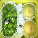 【ふるさと納税】0027-B-006【令和3年発送】岡山白桃とシャインマスカットのセット