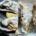 【ふるさと納税】岡山虫明産(瀬戸内市)牡蠣  むき身約500...