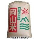 【ふるさと納税】岡山県産 「朝日」玄米30kg×1袋 【お米