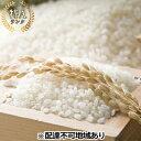 【ふるさと納税】岡山県赤磐産 きぬむすめ 玄米10kg 【お
