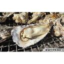【ふるさと納税】【期間限定】寄島産の牡蠣(殻付)3kg 【魚介類・カキ・牡蠣】 お届け:2020年2月中旬〜4月初旬