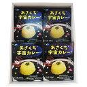 【ふるさと納税】あさくち宇宙カレー 4箱 【加工食品・惣菜・