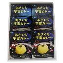 【ふるさと納税】あさくち宇宙カレー 6箱 【加工食品・惣菜・