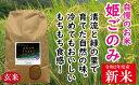 【ふるさと納税】TT-1 米 おいしいお米 姫ごのみ(玄米)