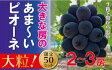 AC-1岡山のあまーいピオーネ(1kg2〜3房)