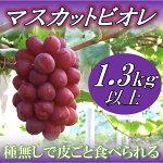 【ふるさと納税】勝央町産ぶどう『マスカットビオレ』(1.3kg以上)