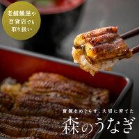 【ふるさと納税】A43森のうなぎ手焼き蒲焼(小)関西風2尾セット