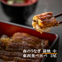 【ふるさと納税】A85森のうなぎ手焼き蒲焼(中)食べ比べ2尾セット