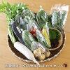 【ふるさと納税】<A80西粟倉産「旬の野菜おまかせセット」>