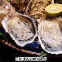 【ふるさと納税】殻つきかき 50粒入り レモン1個つき 【魚貝類・生牡蠣・かき】 お届け:2020年1月中旬〜3月下旬