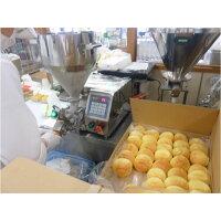 【ふるさと納税】広島・瀬戸内コラボ!ジェラート入りくりーむパンアイスなくりーむパン10個
