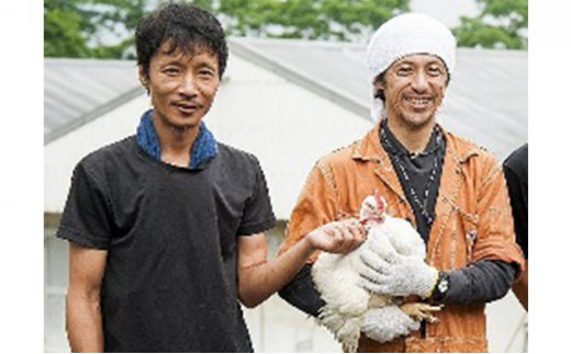 【ふるさと納税】★ぶち盛り★広島熟成どり 手羽元 8kg(冷蔵) 【肉/鶏肉/手羽・にく・とり肉】