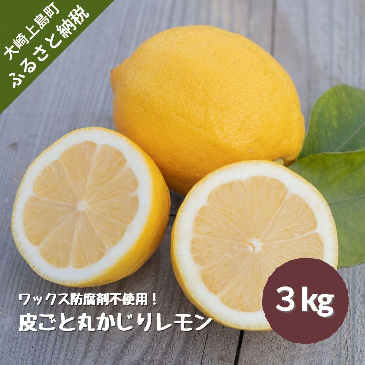 大崎上島産皮ごと丸かじりイエローレモン約3kg