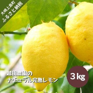 完熟レモン