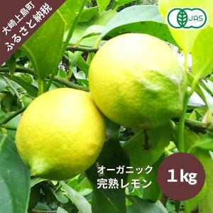【ふるさと納税】大崎上島産〈12月~3月発送〉有機JAS認証!オーガニック完熟レモン約1kg
