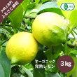 サムネ_オーガニック完熟レモン