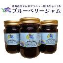 【ふるさと納税】ブルーベリー北海道産てん菜グラニュー420g