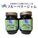 【ふるさと納税】ブルーベリー北海道産てん菜糖220g×2本 ...