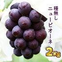 【ふるさと納税】ニューピオーネ2kg 送料無料/種無し/訳あ...