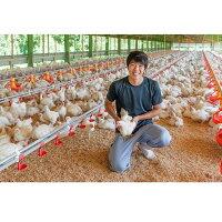 01E-002【ふるさと納税】秋川牧園旨みたっぷり鶏肉セット