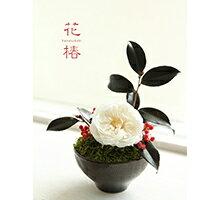 プリザーブドフラワー 花椿