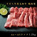 【ふるさと納税】G-3 すだち牛黒毛和牛(焼肉用)1.2kg...