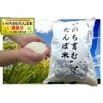【ふるさと納税】希少でおいしい特別栽培米!いのち育むたんぼ米10kg【KS-02】