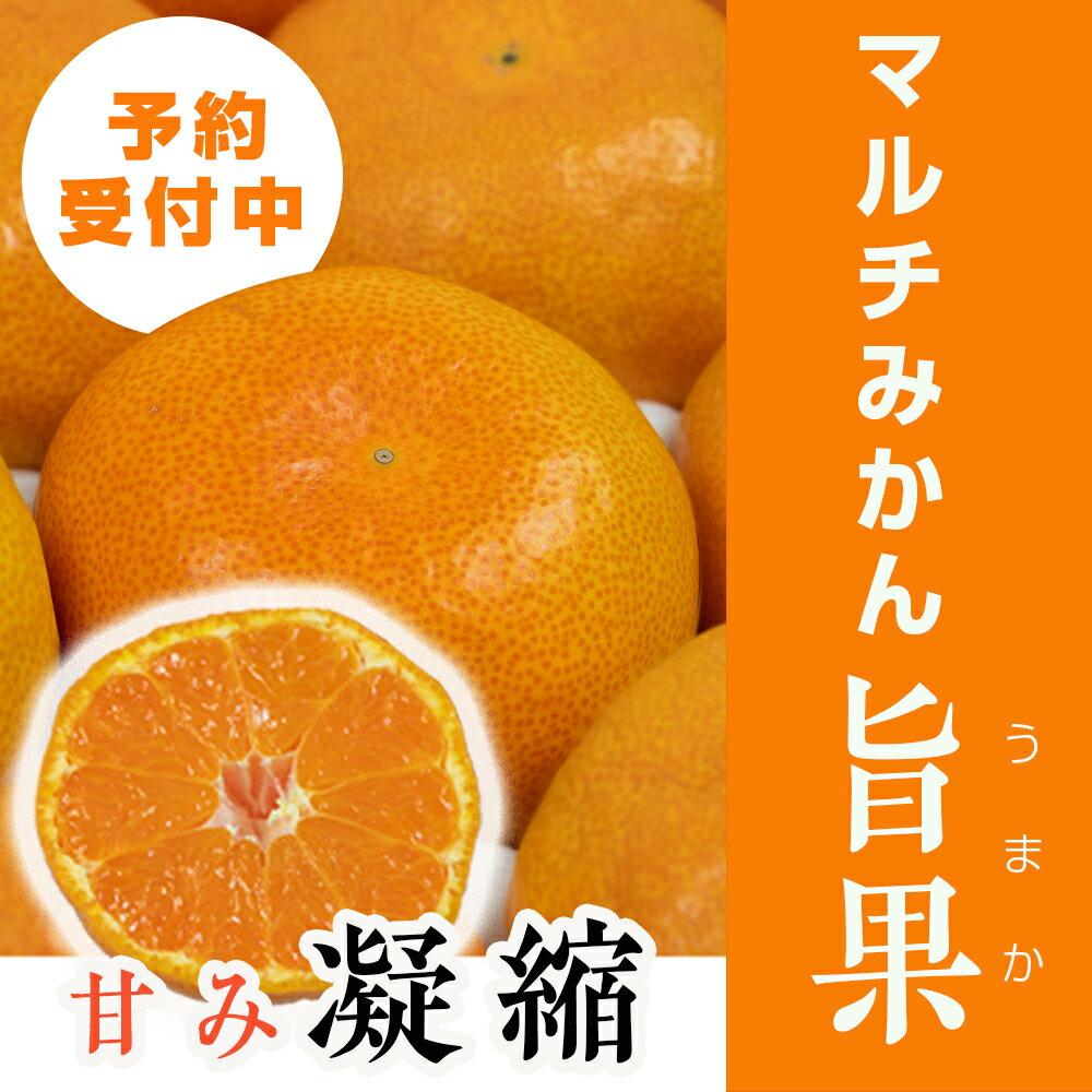 フルーツ・果物, みかん 2 201911