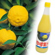 【ふるさと納税】爽やか! 100% ゆず果汁 720ml